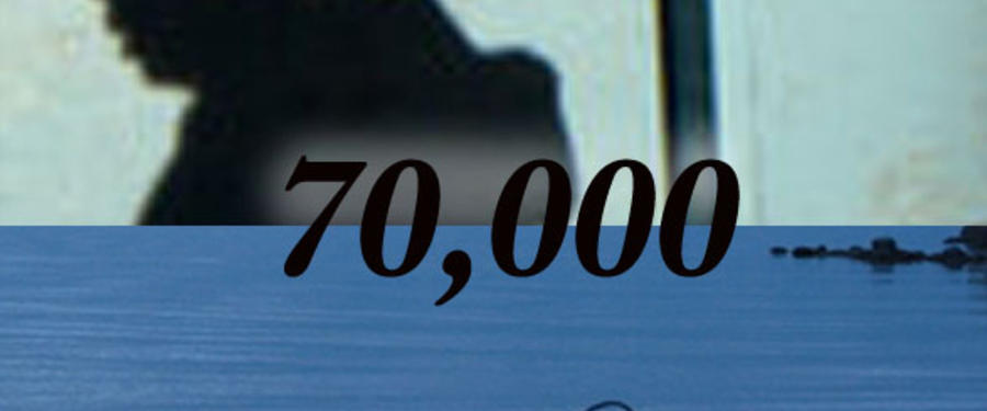 70,000 - 2009 Movies - Lakedance Film Festival, Sandpoint Idaho